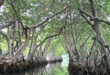 Islas Peligrosas en el Mundo