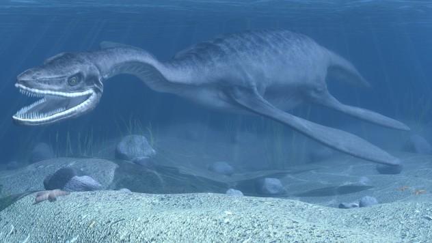 dragón del lago Chelan