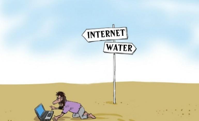 internet tontos