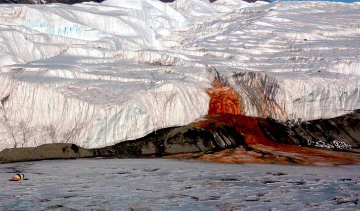 glaciar taylor