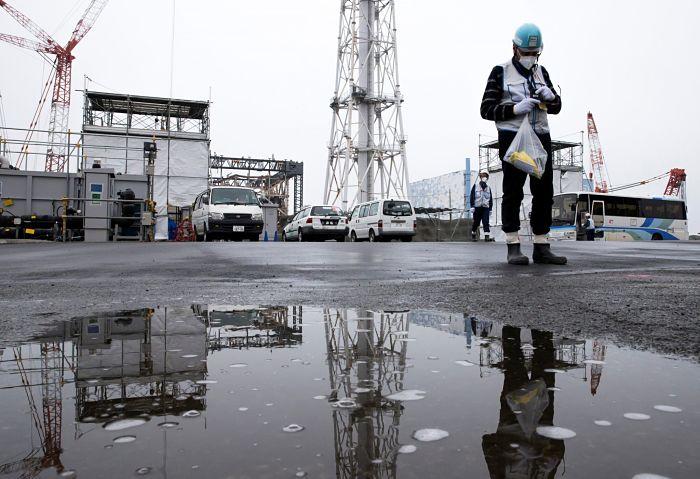 fukushima muertos