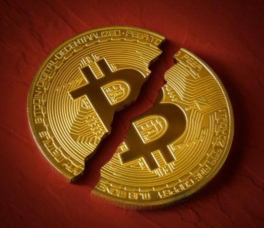 curiosidades del bitcoin
