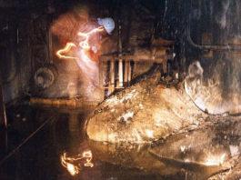 pata de elefante en Chernobyl