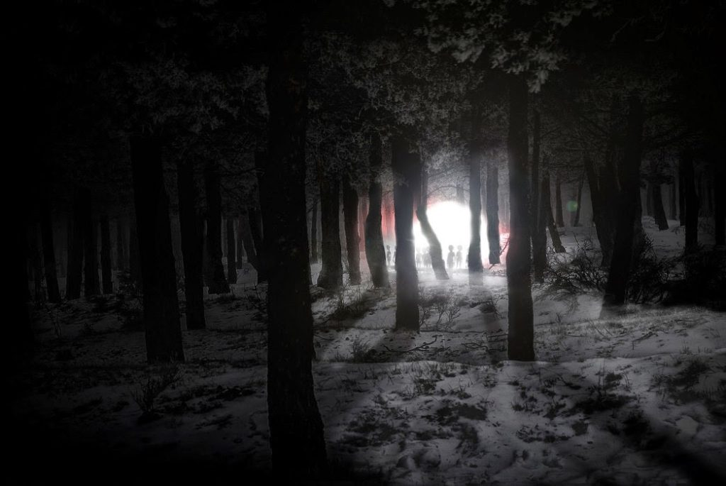 bosque de Rendlesham