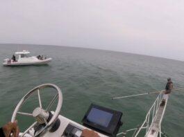 Salto a barco de tiburon blanco
