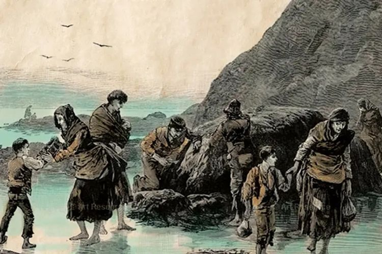 causas de la gran hambruna irlandesa
