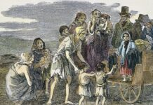 gran hambruna irlandesa